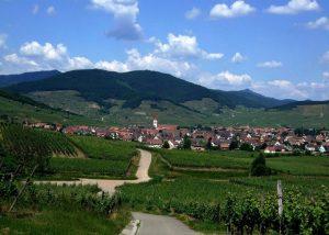 Etienne Simonis - beautiful landscape of vineyard and village