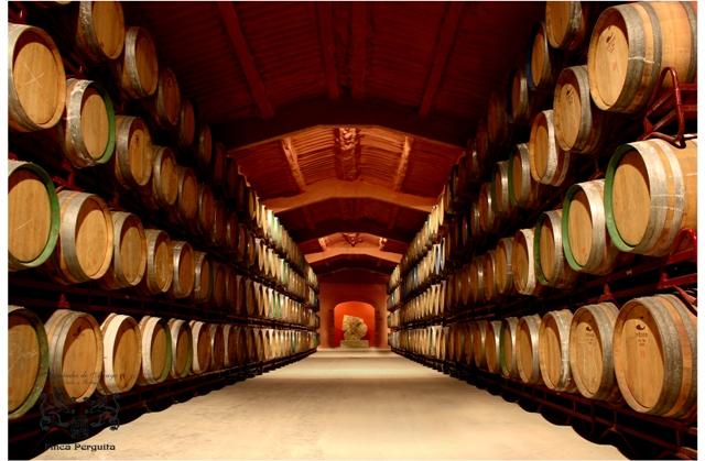 fernandez de arcaya many wooden barrels for wine aging in spain