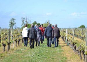 gourmet walk wine tourism