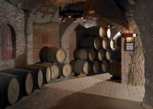 hilo de ariadna wooden barrels of wine in the wine cellar inside winery