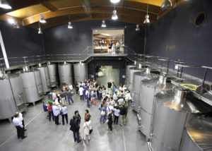 hiruzta bodega modern laboratory with large steel tanks for wine production