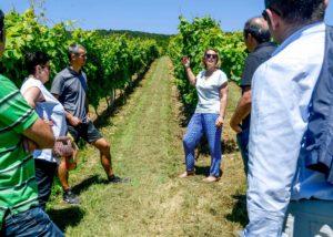 hiruzta bodega visitors on vineyard tour near winery in lovely spain