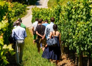 hiruzta bodega visitors stroll through lush vineyards near winery