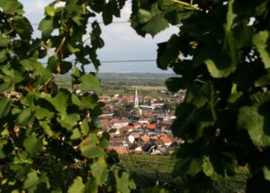 hubert ly estate top view of the city and estate in germany