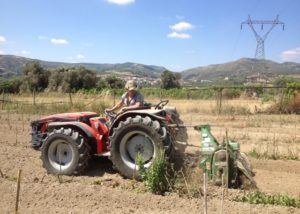 irini silva wines red tractor on vineyard near winery in greece