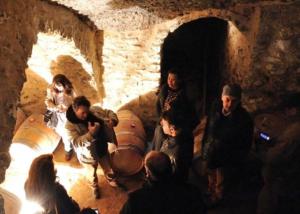 kirios de adrada visitors inside old wine cellar during winery tour