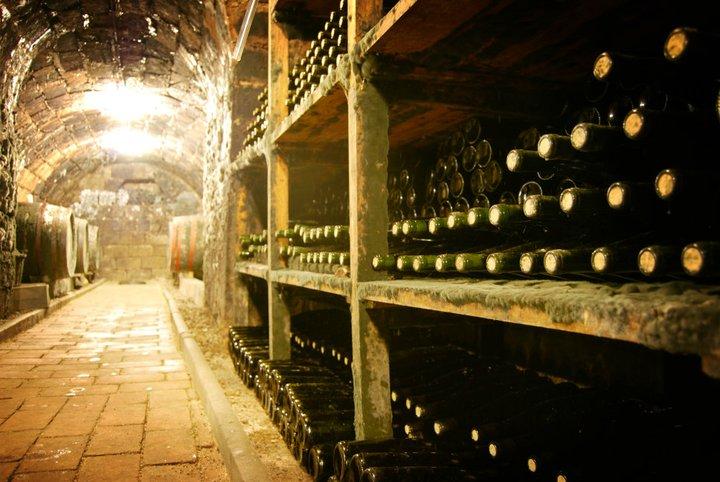 kvaszinger winery bottle of divine wine from hungarian winery