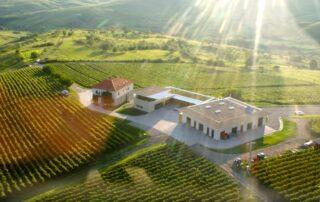 lacerta winery bird eye view of the beautiful estate and lush vineyards