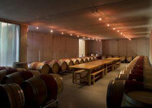 Mas Rodó Vitivinicola winery cellar located in Spain
