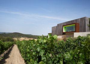Mas Rodó Vitivinicola winery and vineyard in Spain