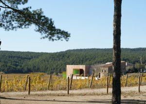 landspace of Mas Rodó Vitivinicola vineyard in Spain