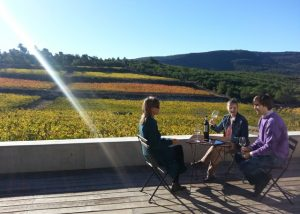 Mas Rodó Vitivinicola wine tastign session in Spain