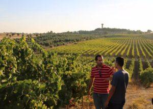 monteiro de matos two winemakers amid lush vineyard near winery