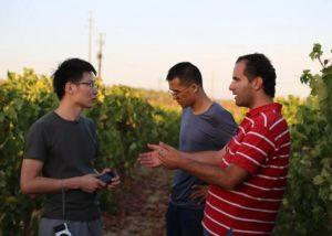 monteiro de matos three winemakers in the vineyard near winery