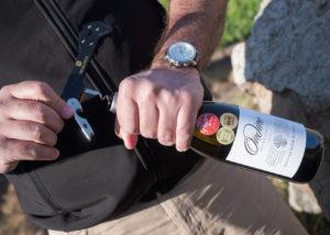 ormonde wine estate winemaker open bottle of divine wine near winery