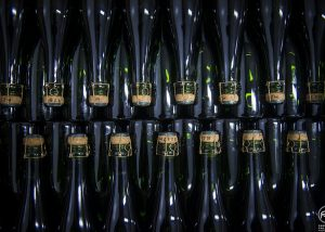 Champagne Albert Beerens - champagne bottles