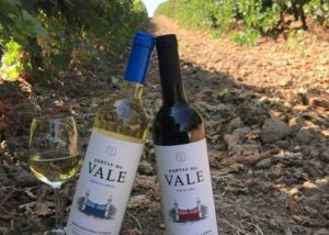 quinta da almiara two bottles of beautiful wine amid vineyard
