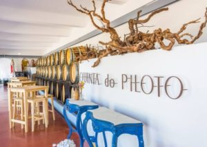 quinta do piloto amazing room for wine tasting sessions inside winery