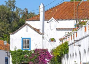 quinta do piloto great white estate and yard in lovely portugal