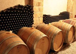 renčel boutique wines modern wine cellar with wooden barrels for wine aging