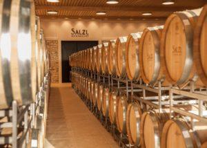 salzl seewinkelhof many wooden barrels for wine aging in the cellar
