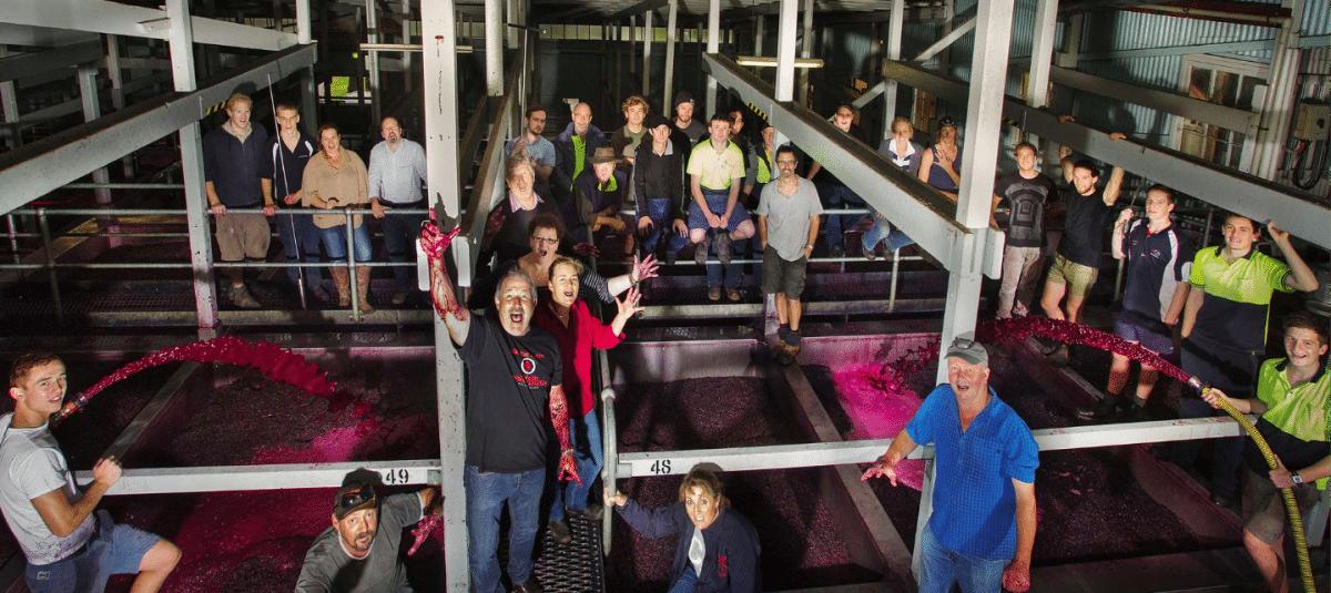 success story wine tourism Seppeltsfield