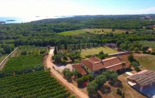 stancija collis top view of the amazing estate and lush vineyards