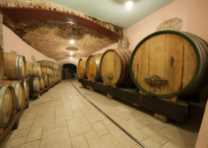 stekar wines large wooden barrels for wine aging inside cellar