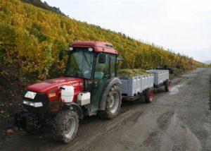 stettler-söhne red tractor near vineyard in lovely germany