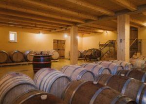 sveti martin beautiful wine cellar with many wooden barrels for wine tasting