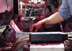 TAMBURLAINE ORGANIC WINES - winemaking