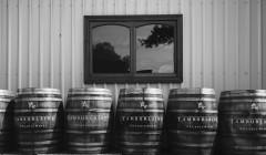 tamburlaine-organic-wines-barrels