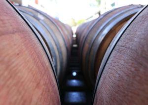 tamburlaine-organic-wines-cellar