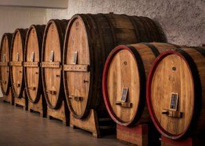Tili Vini winery cellar with huge barrels inside