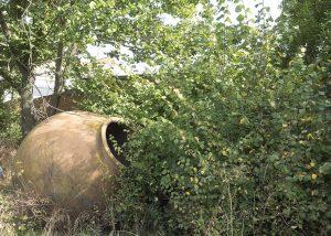 giant bowl at Solera Bodgeas vineyard in Spain