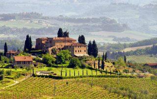 wine tourism boom