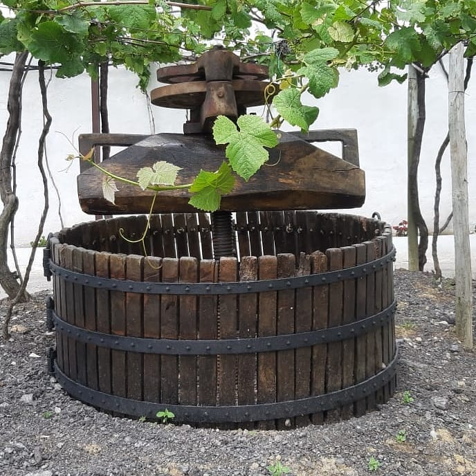 old winemaking tool at Txakoli Basa Lore winery in Spain