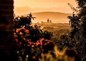 tili vini amazing view at vineyard in Italy