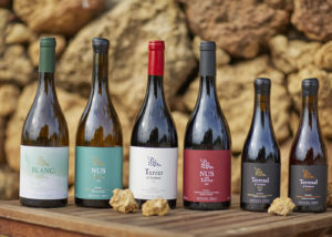 vinyes del terrer six different types of amazing wine from the winery