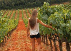 A woman walking in the vineyard at Domaine de la Mordorée