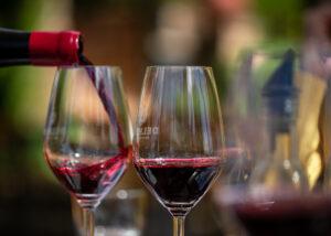 Delheim - 2 glasses of red wine