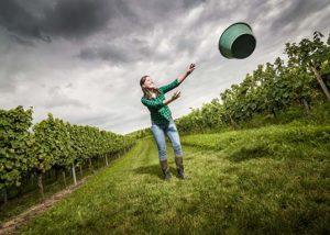 Woman throwing a basket in the vineyard at Weingut Ernst Bretz