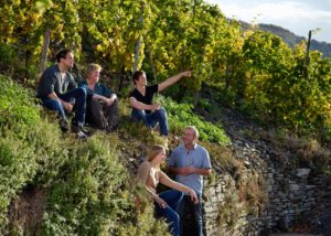 weingut geierslay winemakers amid lush vineyards near winery