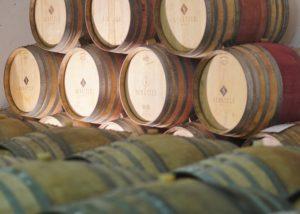 weingut gregor & thomas amazing wine cellar with many large wooden barrels