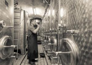 weingut höfling winemaker near large steel tanks in laboratory