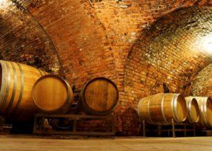 weingut neustifter amazing wine cellar full of wooden barrels for wine aging