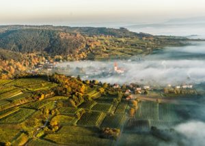 weingut tom dockner bird eye view of the amazing surroundings near winery