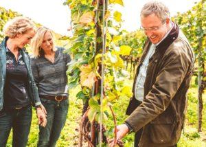 weingut zimmerlin three wineamkers inspecting grapes on vineyard near winery