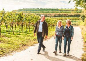 weingut zimmerlin three winemakers stroll through lush vineyard