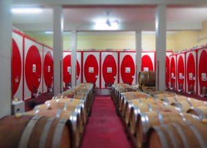 Amazing modern wine cellar in the unique estate of Marco Skolaris.